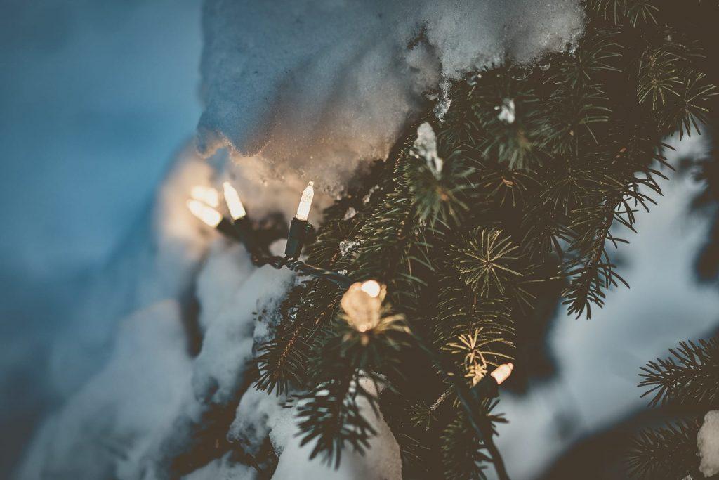 Snow, Ice, Lisle